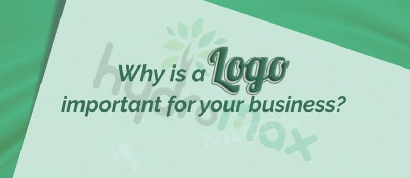 Why is Logo important for your business_silk media web services_1